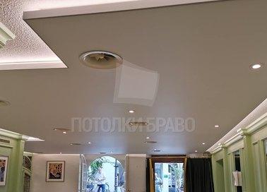 Матовый натяжной потолок под кожу НП-316