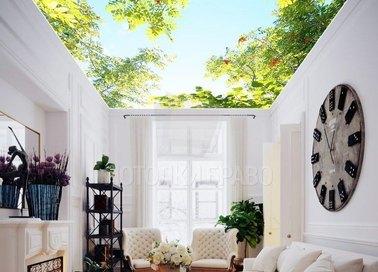 Матовый натяжной потолок с изображением неба и листьев НП-500