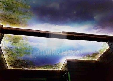 Темный матовый натяжной потолок для деревянного дома НП-507