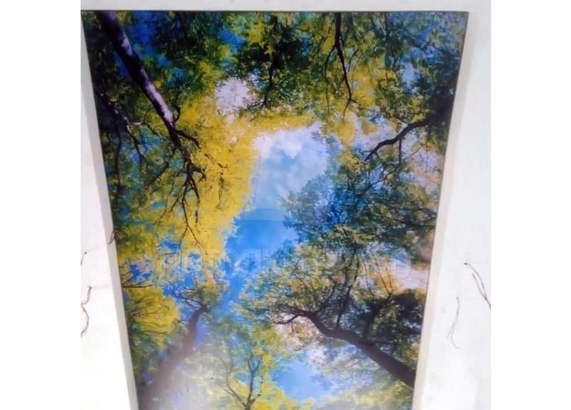 Двухуровневый матовый натяжной потолок с деревьями НП-513 - фото 2