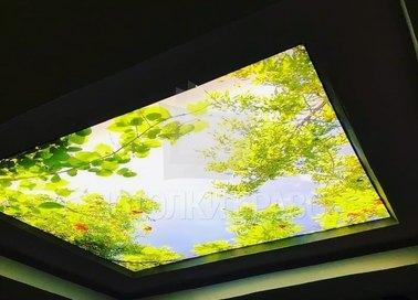 Синий матовый натяжной потолок с листьями НП-515 - фото 2