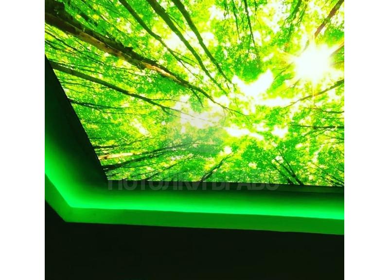 Зеленый матовый натяжной потолок с изображением НП-516 - фото 2