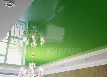 Зеленый глянцевый натяжной потолок в стиле эко НП-615