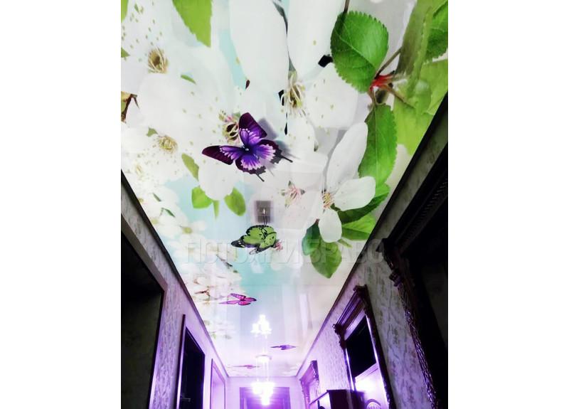 Матовый натяжной потолок с весенним принтом для коридора НП-652