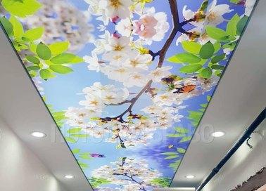 Матовый натяжной потолок в весеннем стиле для коридора НП-678