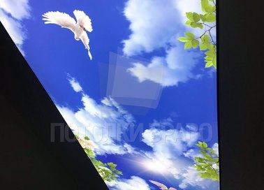 Матовый природный натяжной потолок для коридора НП-690 - фото 2