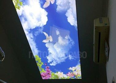 Матовый природный натяжной потолок для коридора НП-690