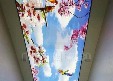 Матовый натяжной потолок в японском стиле НП-714 - фото 2