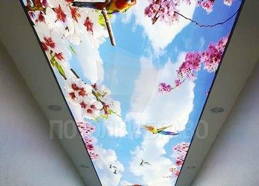 Матовый натяжной потолок в японском стиле НП-714