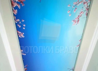 Матовый натяжной потолок в японском стиле НП-723