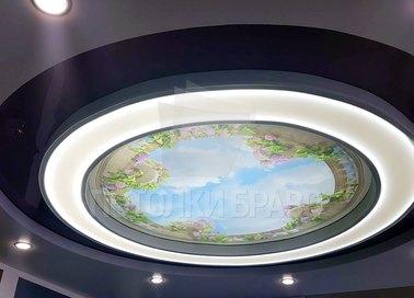 Круглый матовый натяжной потолок с изображением НП-1030