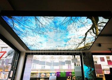 Матовый натяжной потолок с ветками для ресторана НП-1031