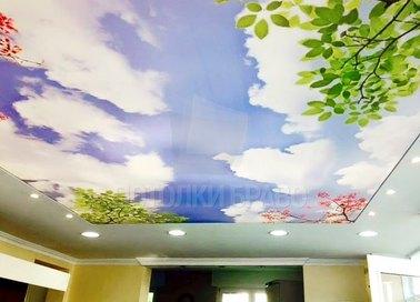 Матовый натяжной потолок с изображением неба для кухни НП-1036 - фото 2
