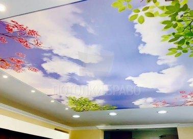 Матовый натяжной потолок с изображением неба для кухни НП-1036