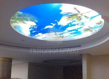 Матовый натяжной потолок с изображением в кругу НП-1044