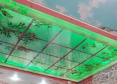 Матовый джунгли в окне натяжной потолок НП-1053