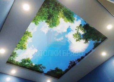 Матовый двухуровневый с изображением неба натяжной потолок НП-1056