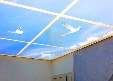 Матовый синий с птицами натяжной потолок НП-1059