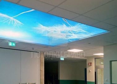 Натяжной потолок с изображением для общественного помещения НП-1082