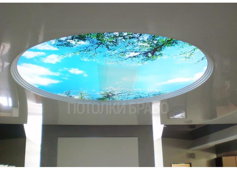 Глянцевый натяжной потолок с круглым изображением природы НП-1090