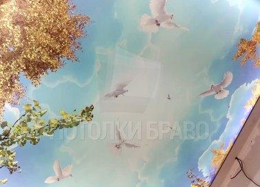 Матовый натяжной потолок с голубями для квартиры НП-1093