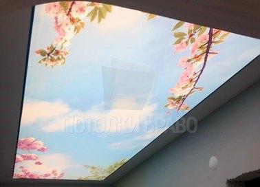 Матовый натяжной потолок в японском стиле НП-1097