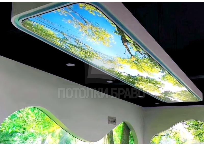 Узкий матовый натяжной потолок с фото-рисунком весны НП-1099