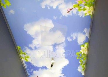 Матовый натяжной потолок с рисунком весны НП-1100