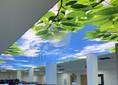 Матовый натяжной потолок с рисунком неба и листьев НП-1101