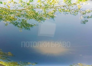 Матовый натяжной потолок с весенним рисунком НП-1102 - фото 2