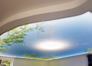 Матовый натяжной потолок с весенним рисунком НП-1102