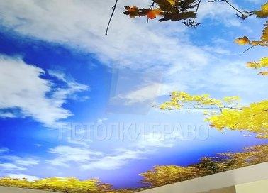 Матовый натяжной потолок с природным рисунком НП-1104 - фото 2