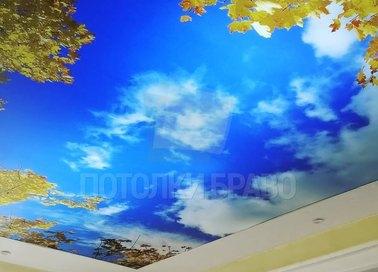 Матовый натяжной потолок с природным рисунком НП-1104