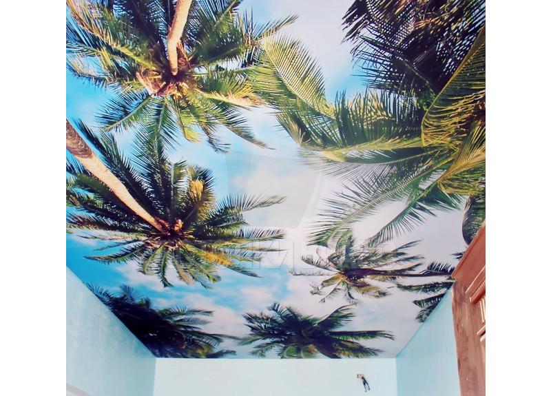 Матовый натяжной потолок с изображением пальм НП-1140