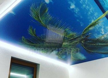 Тропический натяжной потолок с пальмой НП-1142