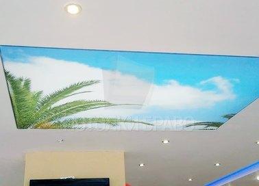 Матовый тропический натяжной потолок для прихожей НП-1143