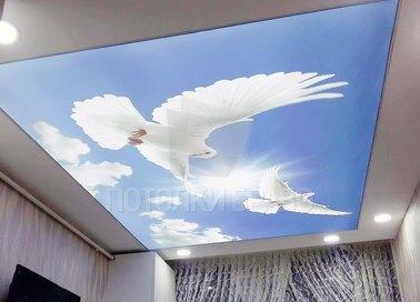 Небесный матовый натяжной потолок с голубями НП-1168