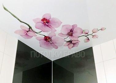 Матовый натяжной потолок с сакурой НП-1479