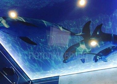 Матовый натяжной потолок для ванной комнаты в морском стиле НП-1492