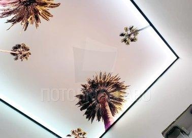 Матовый натяжной потолок в современном стиле для ванной НП-1498