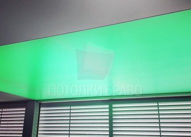 Зеленый матовый натяжной потолок НП-1521 - фото 2