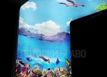 Матовый натяжной потолок с подводным миром НП-1659