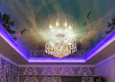 Глянцевый натяжной потолок птицами для жилой комнаты НП-1729 - фото 2
