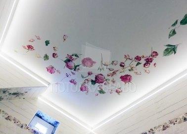 Матовый натяжной потолок с печатью цветов НП-1780