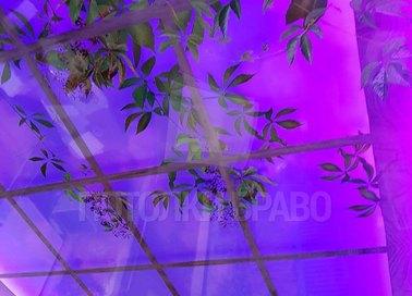 Матовый фиолетовый натяжной потолок с листочками НП-1784