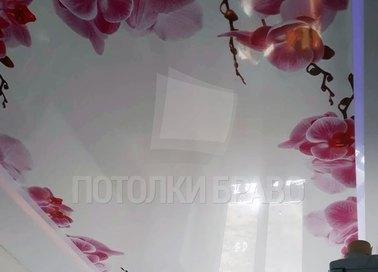 Матовый натяжной потолок с орхидеями по периметру НП-1787 - фото 2