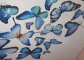 Матовый натяжной потолок с голубыми бабочками НП-115