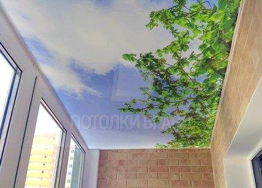 Матовый натяжной потолок с природой для балконаНП-124 - фото 2