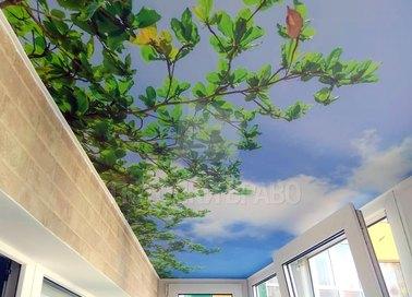 Матовый натяжной потолок с природой для балконаНП-124